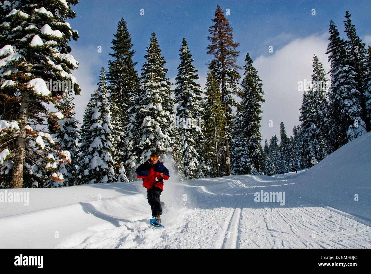 snowshoes, sport, Winter scene, North Lake Tahoe, California, USA Stock Photo