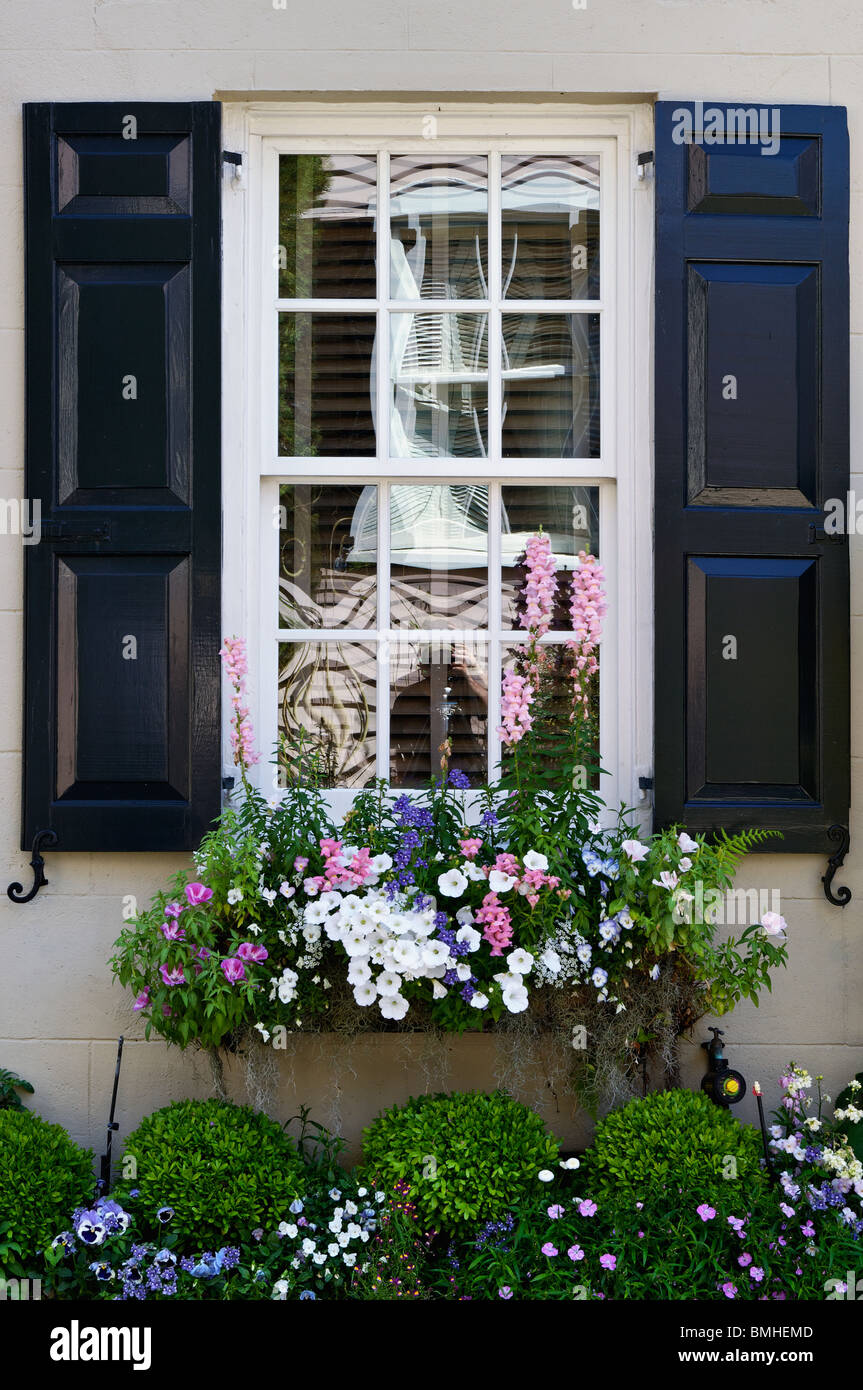 Detail of Window and Flowers of Historic Home in Charleston, South Carolina - Stock Image
