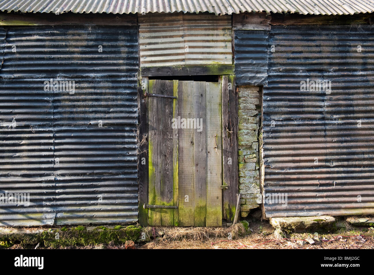 Old corrugated-iron barn with wooden door, Wales, UK - Stock Image