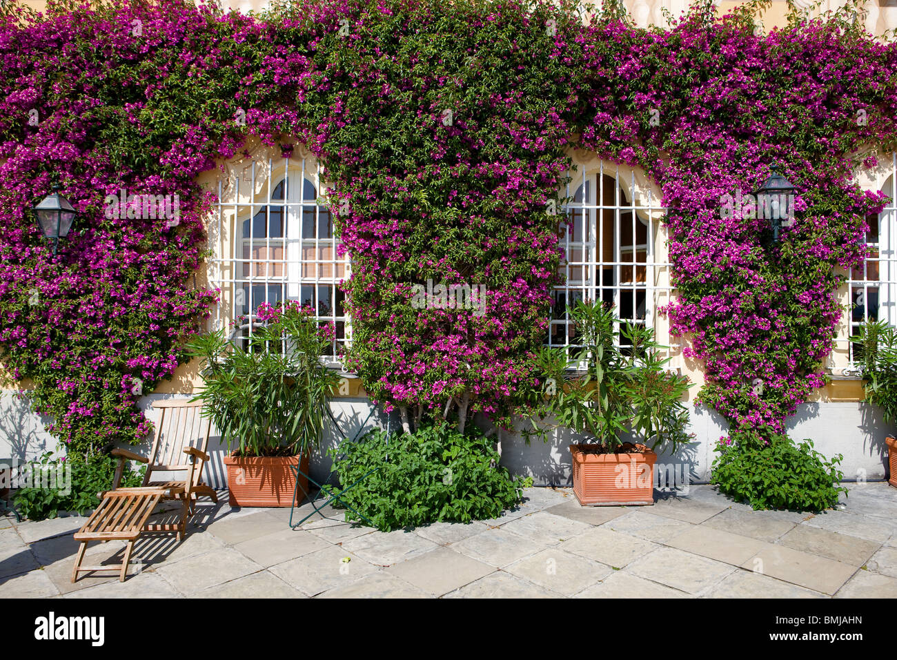 Italy, Liguria, house facade with flowers, bougainvillea and windows - Stock Image