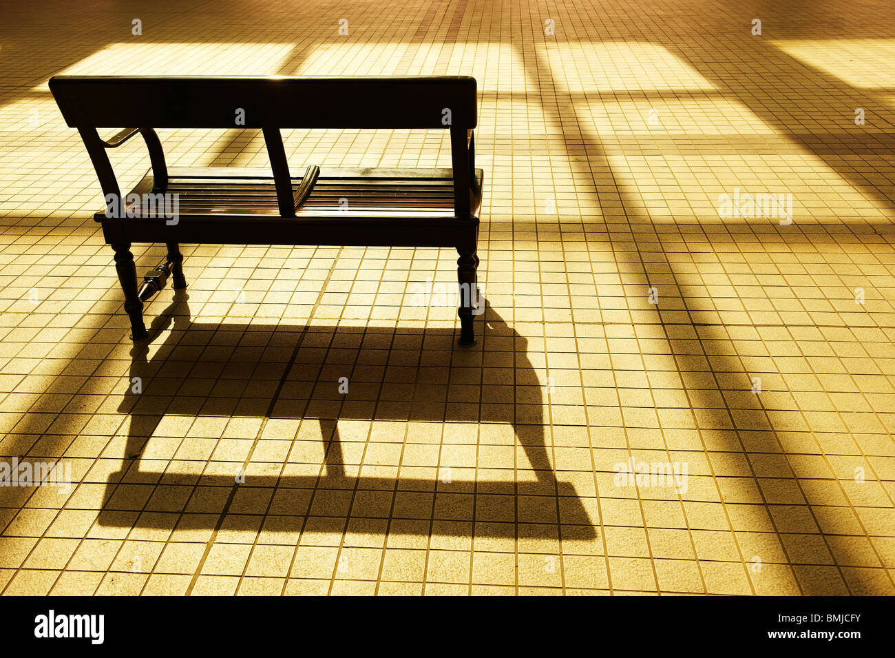 A lonely bench in the golden sitting sun with shadow stretching long and wide. Stock Photo