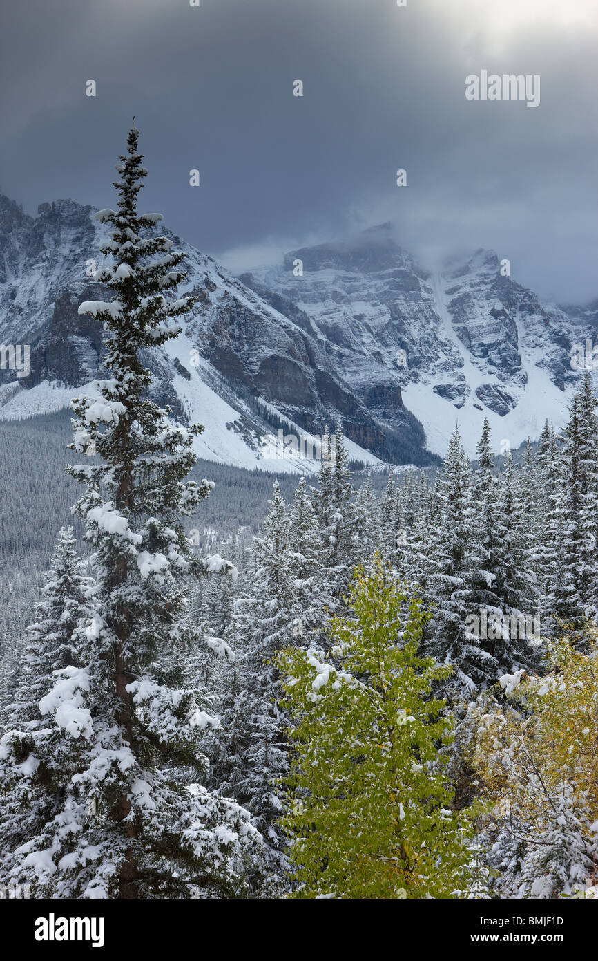 a fresh snowfall in the Valley of the Ten Peaks, Banff National Park, Alberta, Canada - Stock Image