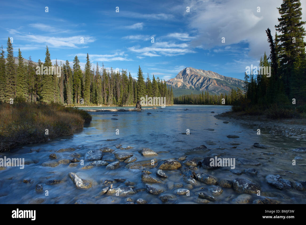 the Athabasca River at Otto's Cache, Jasper National Park, Alberta, Canada - Stock Image