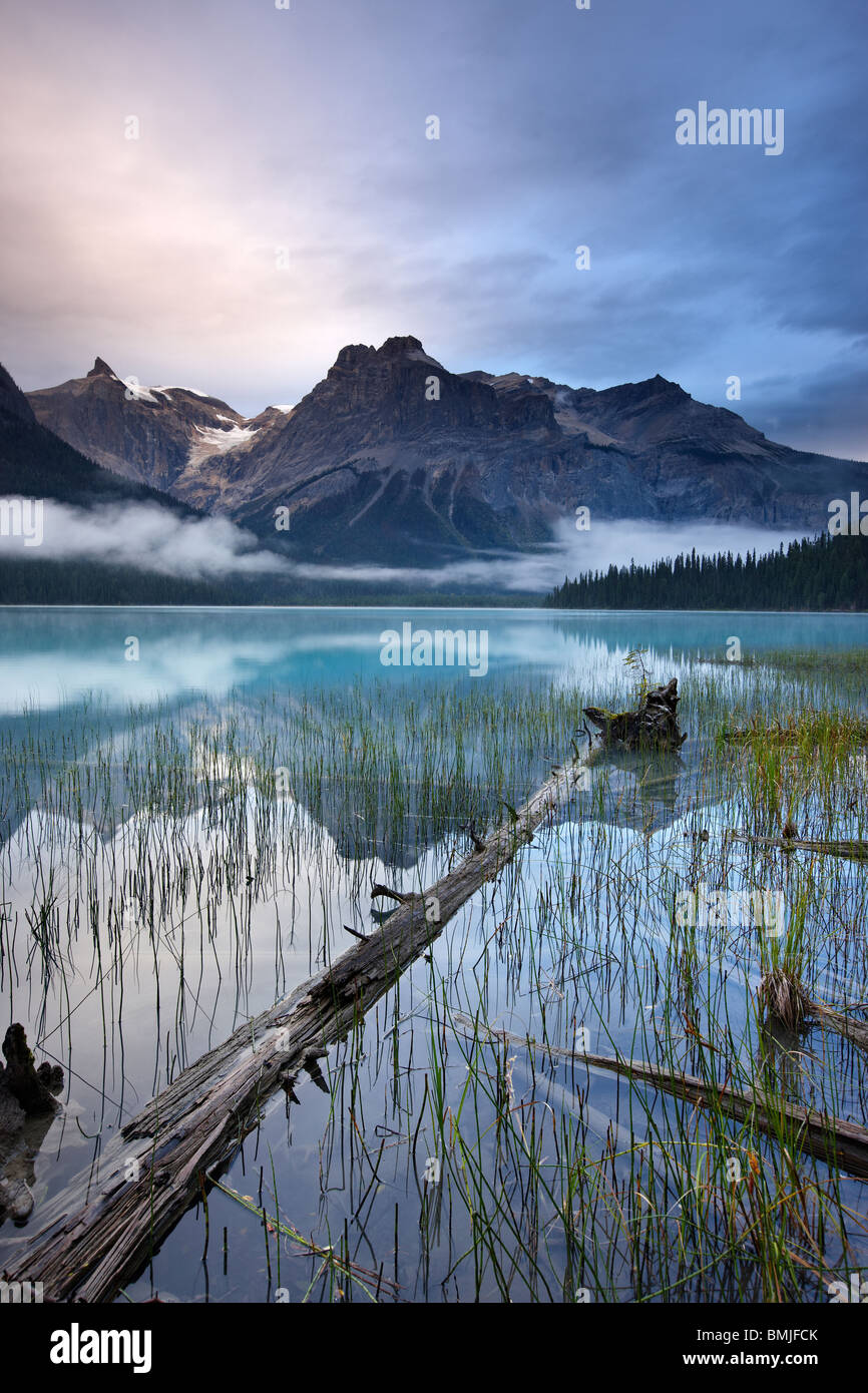 Emerald Lake at dawn with the peaks of the President Range beyond, Yoho National Park, British Columbia, Canada - Stock Image