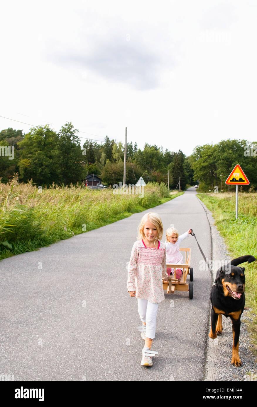 Children outside walking the dog - Stock Image
