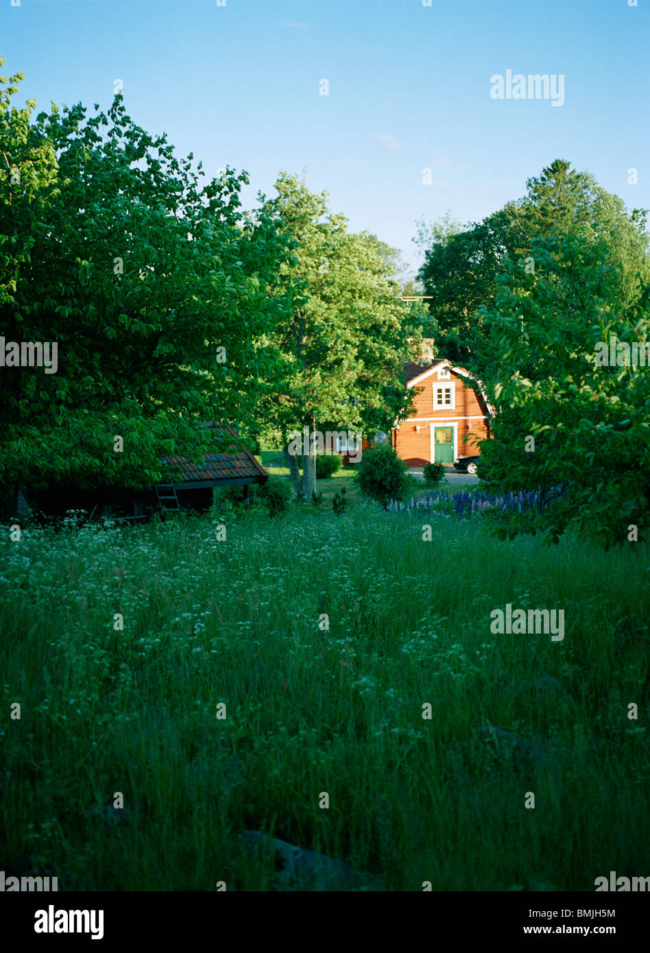 View of summer cottage - Stock Image