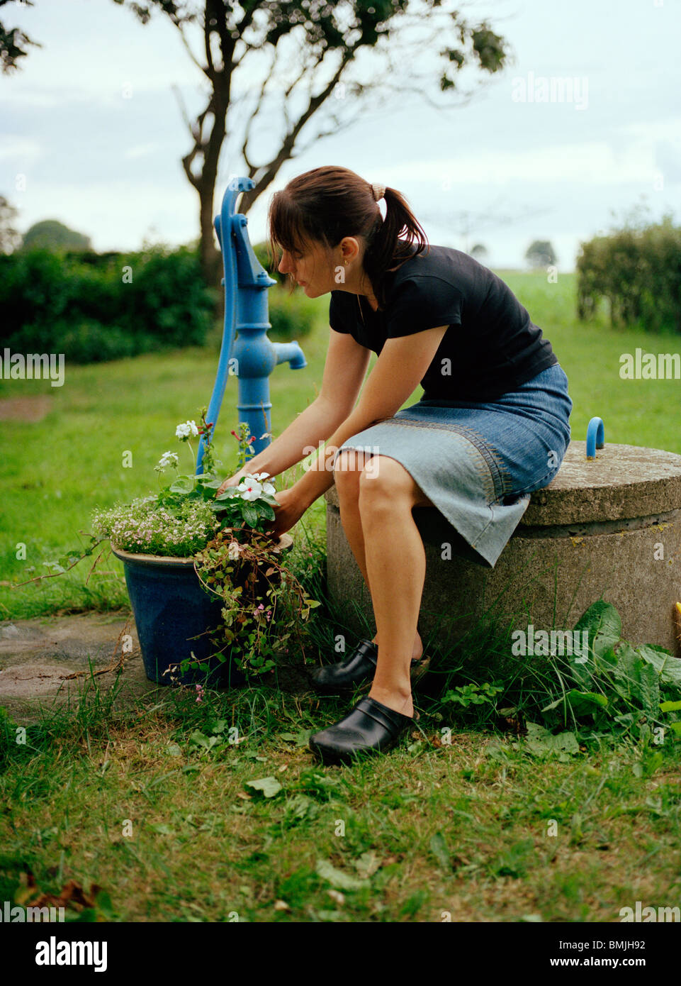 Woman planting flower in pot Stock Photo