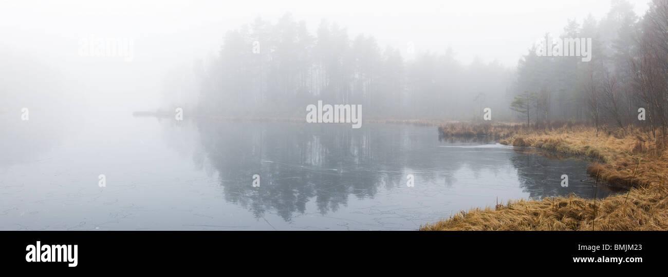 Scandinavian Peninsula, Sweden, Skane, View of misty lake - Stock Image