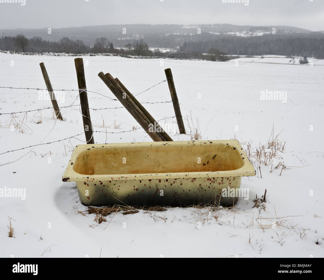 Scandinavia, Sweden, Vastergotland, Old bathtub in snow - Stock Image