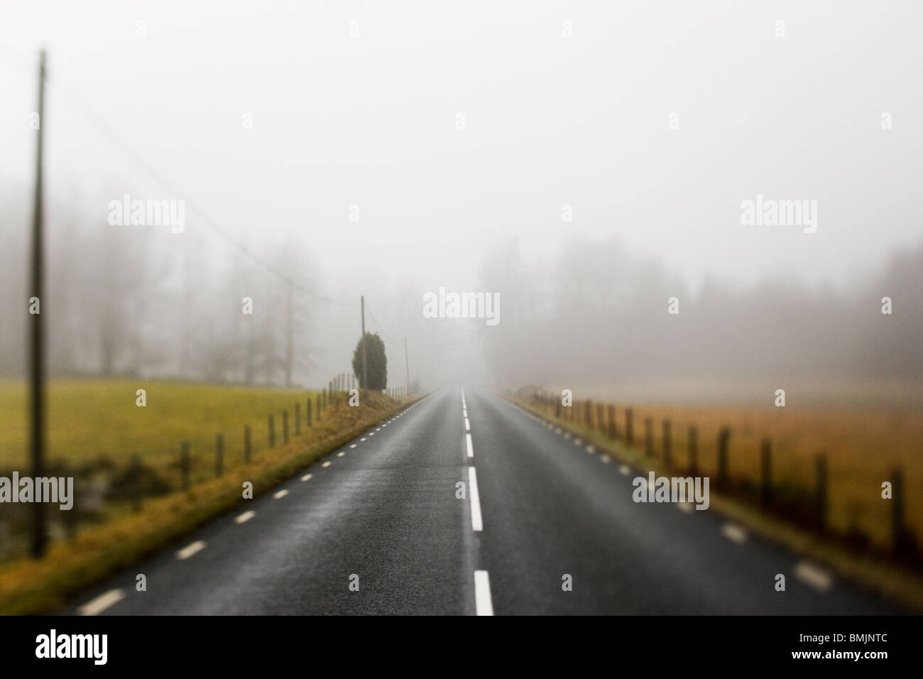 Scandinavian Peninsula, Sweden, Skane, View of empty country road through landscape - Stock Image