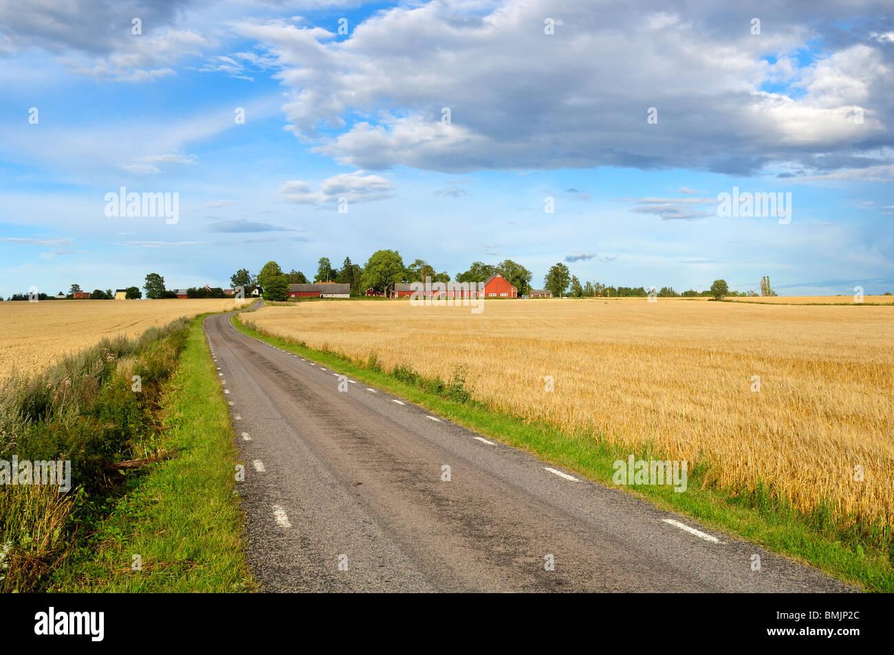 Scandinavian Peninsula, Sweden, Ostergotland, View of empty road passing through field - Stock Image