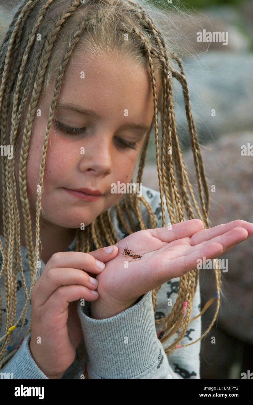 Scandinavia, Sweden, Smaland, Girl (6-7) with holding bug on palm, close-up - Stock Image