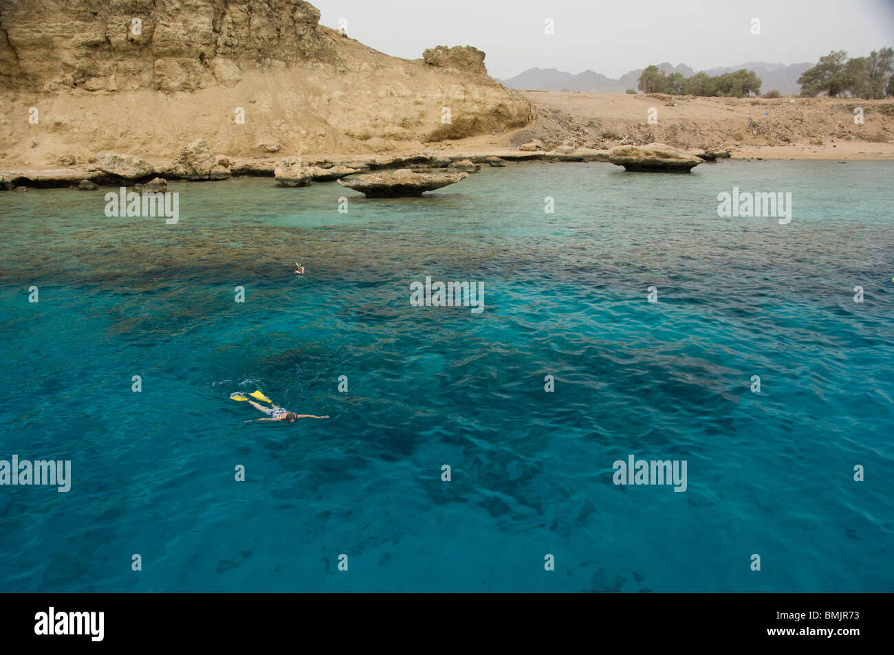 Egypt, Sinai Peninsula, Gulf of Tiran, Sharm El-Sheikh . Snorkeling in the Red Sea's Ras Mohammed National Marine - Stock Image