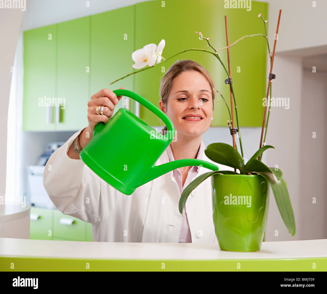 Doctor watering plant - Stock Image