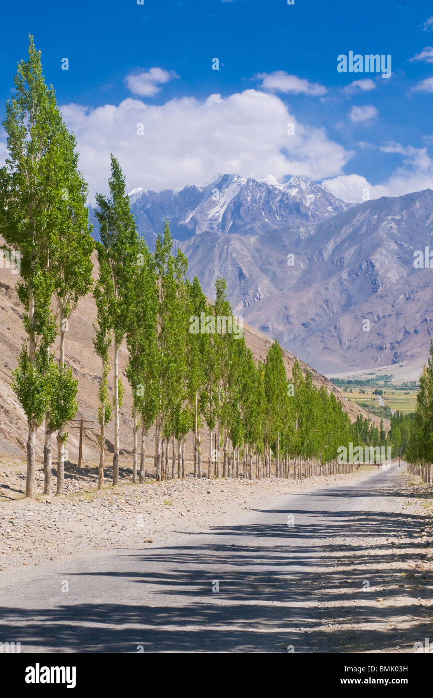 Country road with tree avenue, Wakhan Valley, Tajikistan - Stock Image