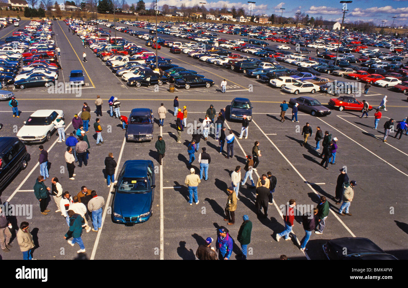 View of used automobiles at Manheim Auto auction, world's largest car  auction site.