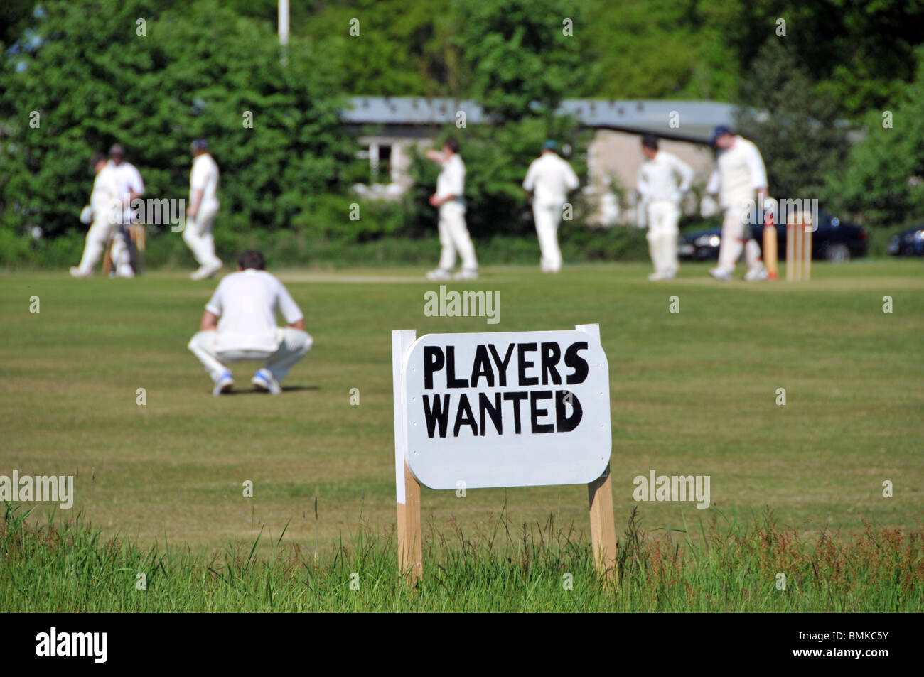 Village green cricket match and sign for players wanted - Stock Image