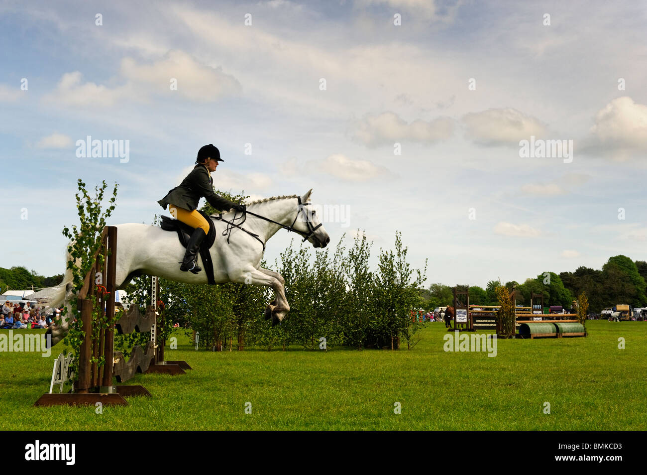 Equestrian event at the Northumberland County Show in Corbridge - Stock Image