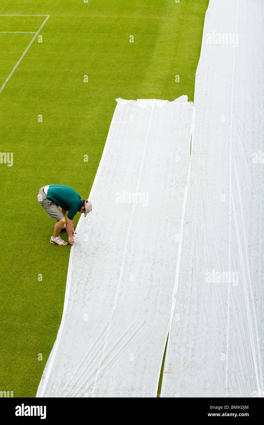 Groundsman at All England Tennis Club, Wimbledon SW19, applying plastic sheets to a seeded lawn tennis Court. UK. - Stock Image