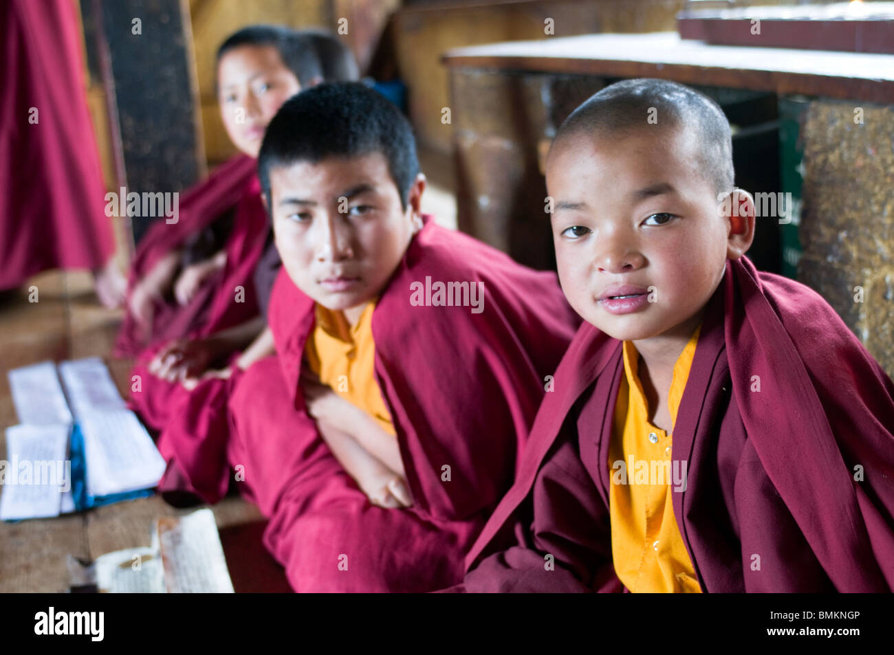 Group of very young buddhist monks is learning. Chimi Lhakhang. Bhutan. Asia. - Stock Image