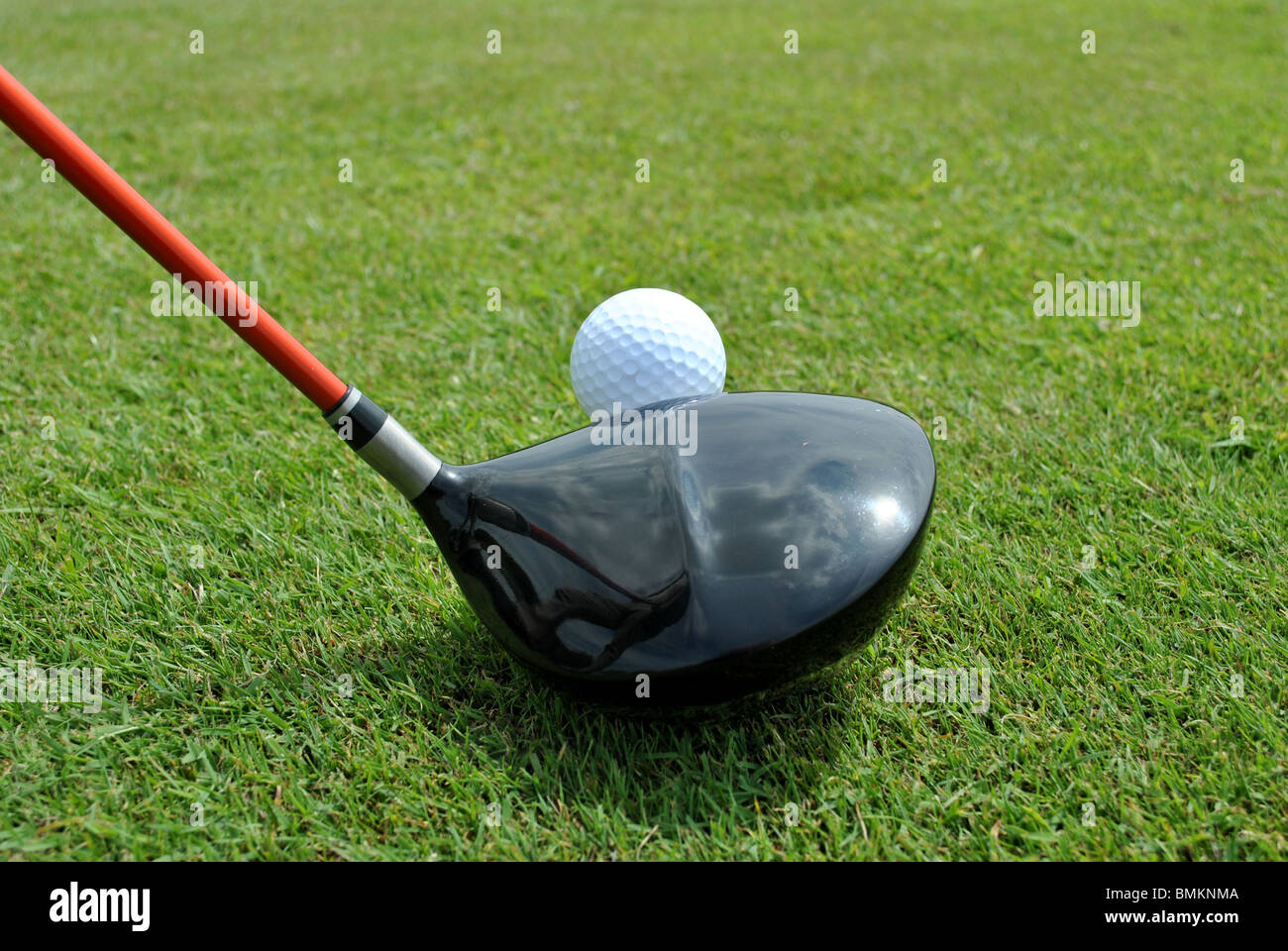 ready to tee off - Stock Image
