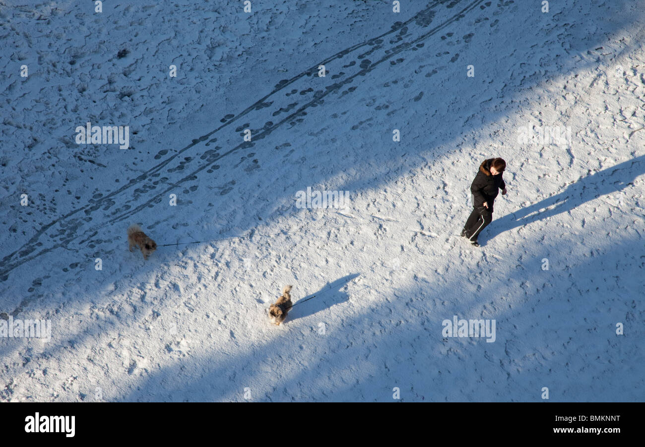 A woman taking a walk with two dogs on snow , Finland - Stock Image