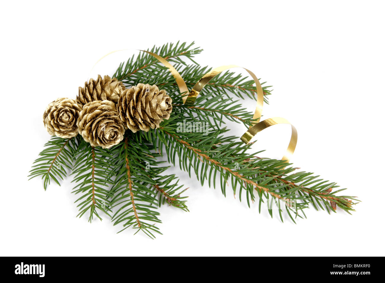 Twig of the spruce decorated with cones - Stock Image