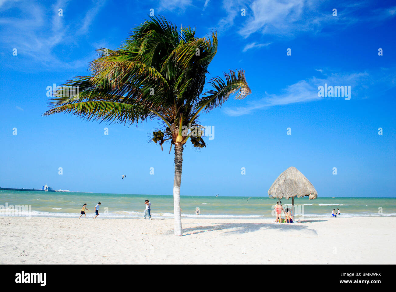 View of beach ; Progresso ; Mexico - Stock Image