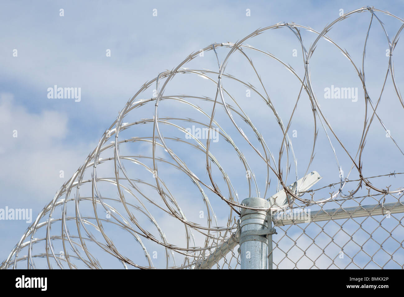 Florida - Feb 2009 - Stainless steel razor wire spirals over chain ...