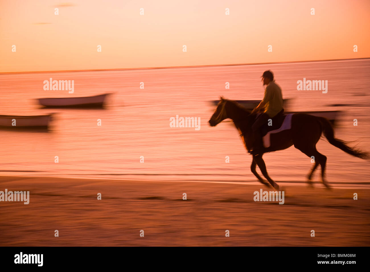Mauritius Horse Stock Photos Images Alamy Afrika Et Tour Le Morne Horseback Riding English Style Rider At Sunrise Belle Mare Public Beach Southeast