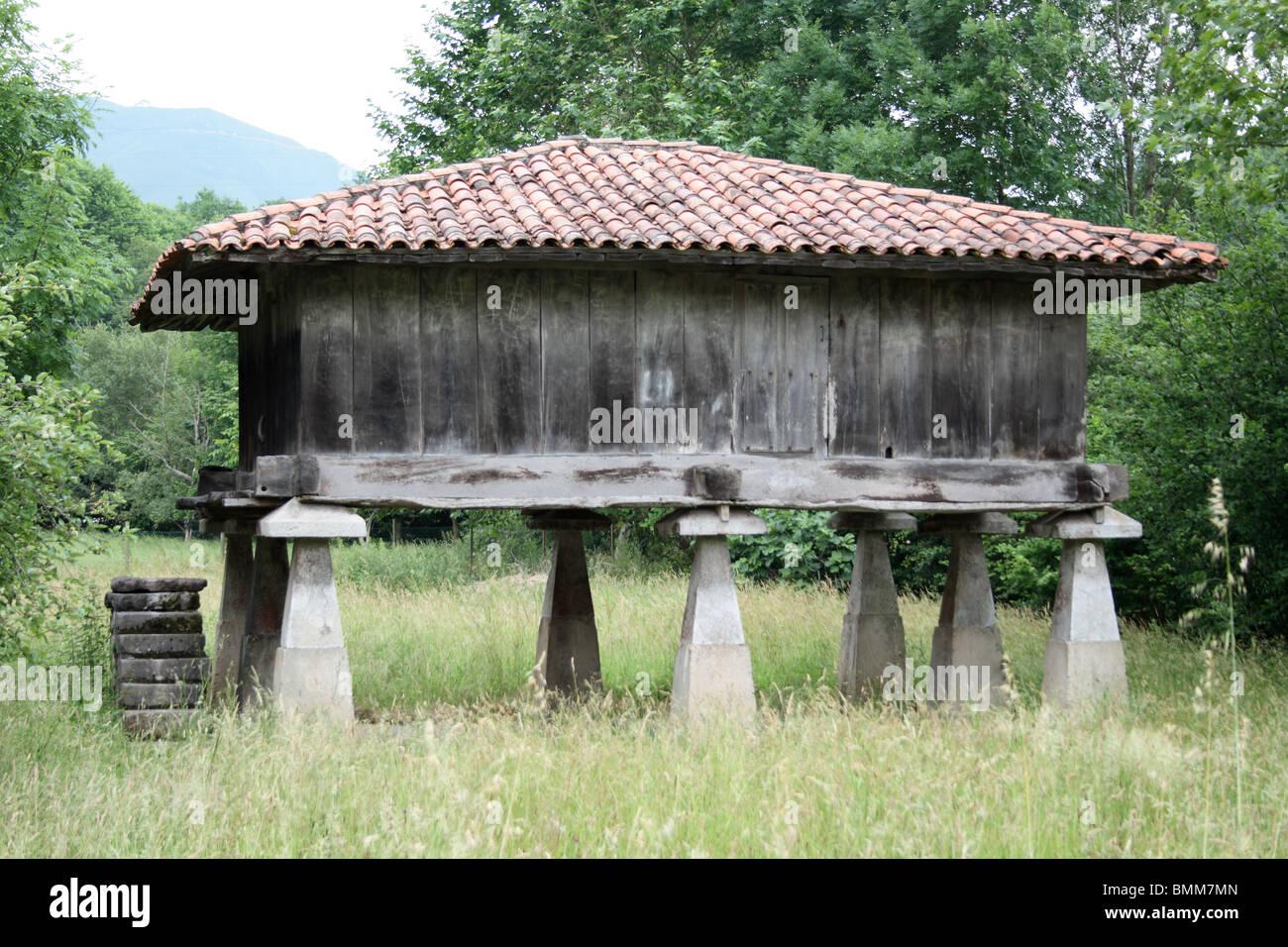 Traditional wooden grain store on stone stilts, near Cangas de Onis, Picos de Europa, Asturias, Spain - Stock Image