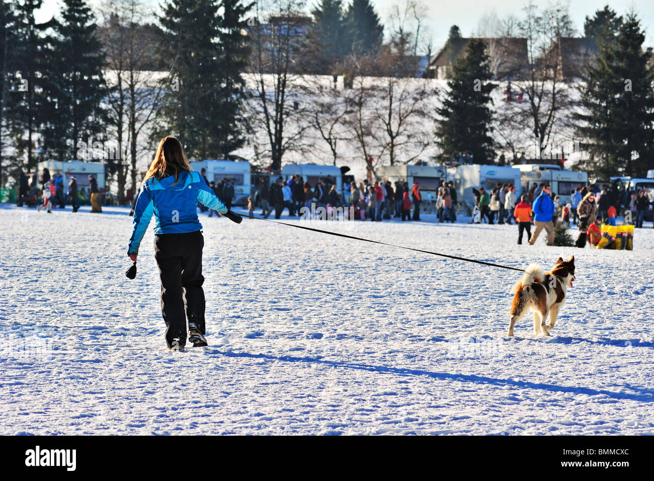 Woman walking her dog in the snow, dog pulling away - Stock Image