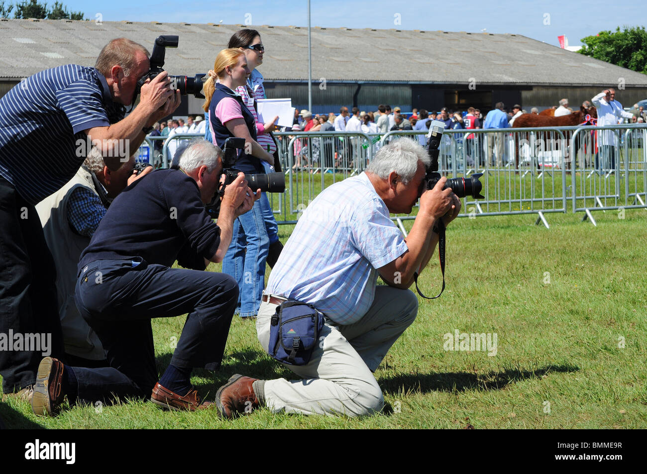 a group of press photographers in the cattle show ring at the royal cornwall show,wadebridge,cornwall,uk - Stock Image