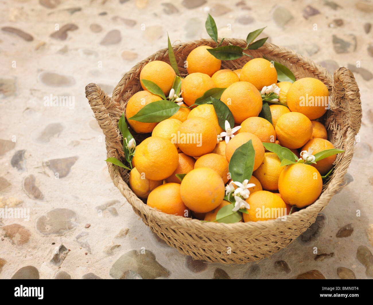 Oranges and flowers in willow basket - Stock Image