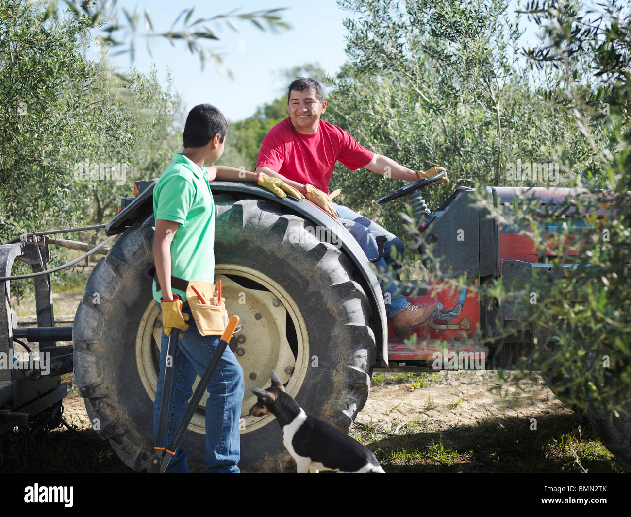 Father and son with tractor - Stock Image