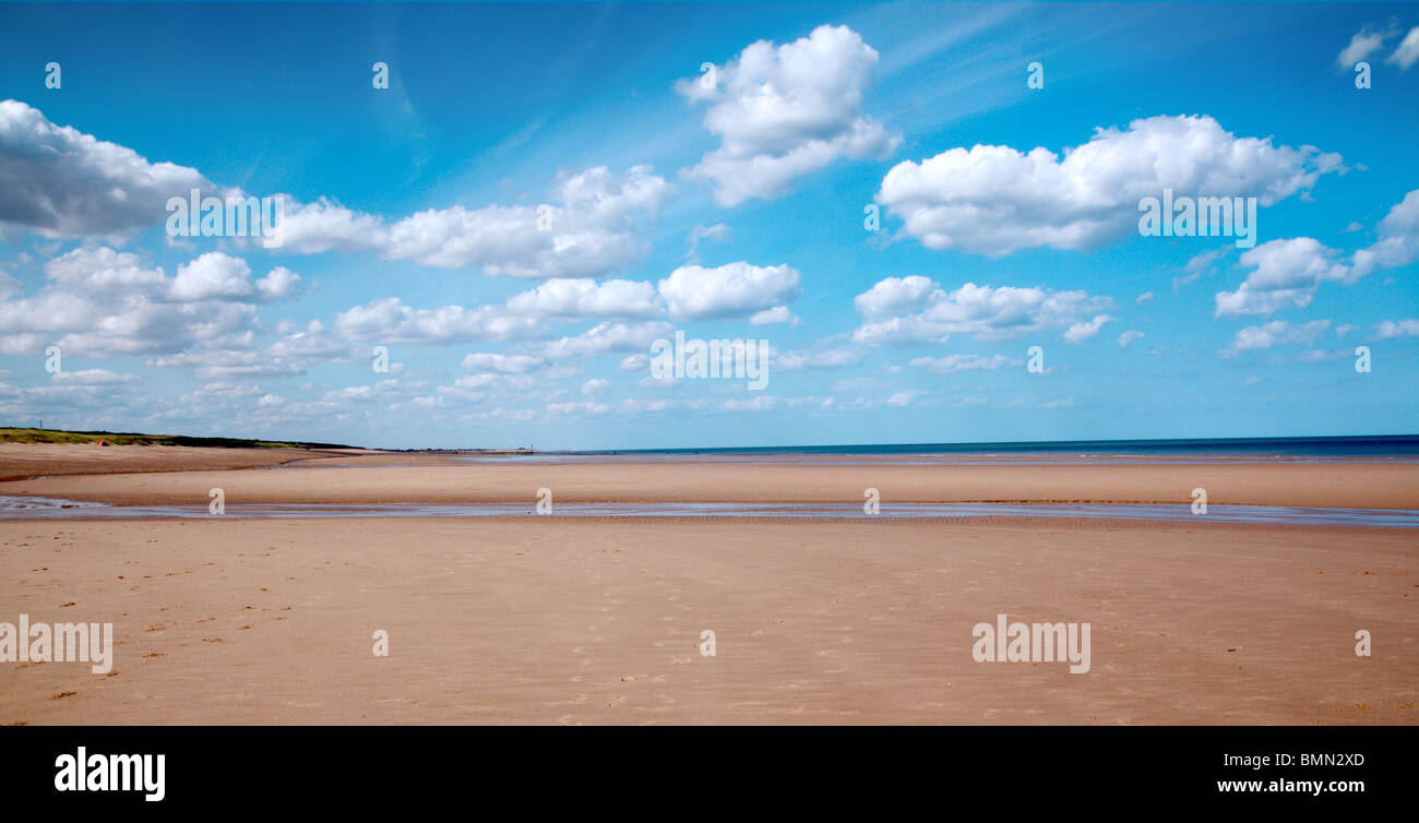 English Coast Summer - Stock Image