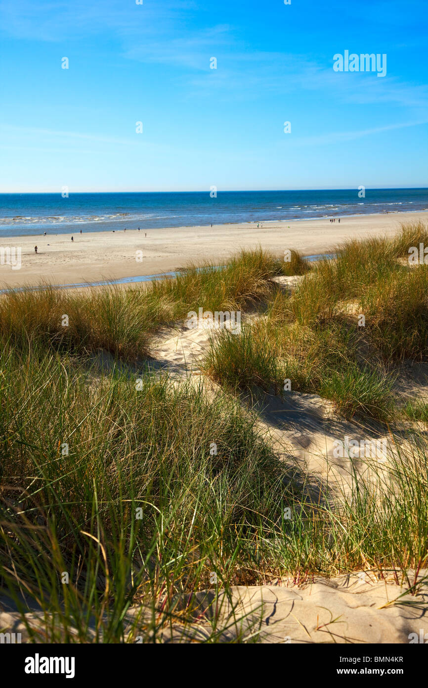 dunes and beach at the french channel coast - Stock Image