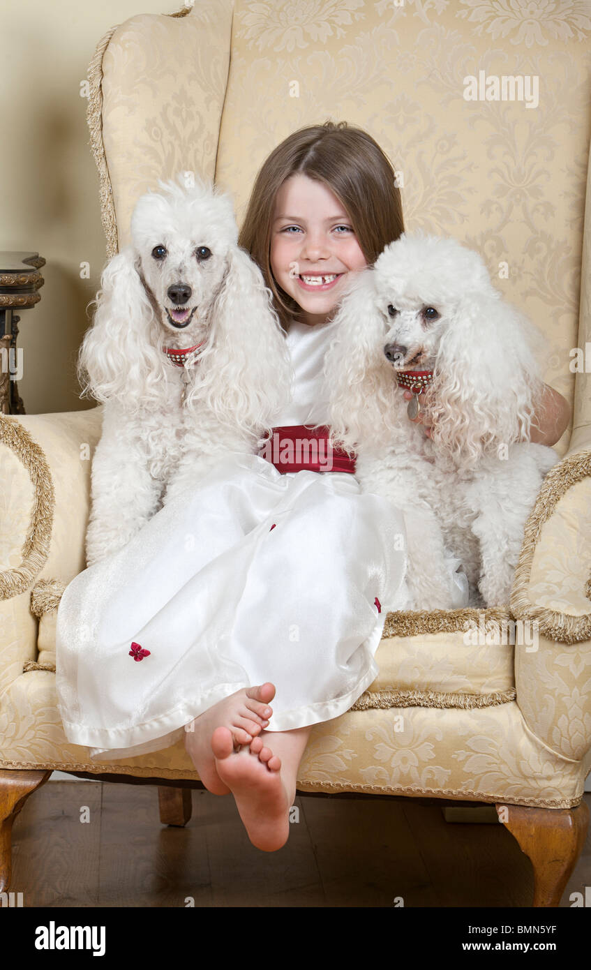 Shot of a Happy Blonde Girl in Large Armchair with Two White French Miniature Poodles - Stock Image
