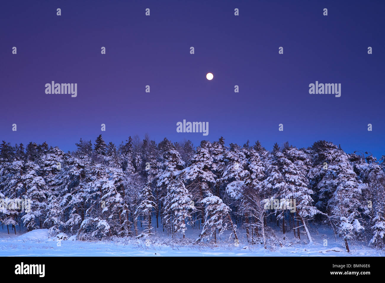 Moonrise at Larkollen in Rygge kommune, Østfold fylke, Norway. - Stock Image