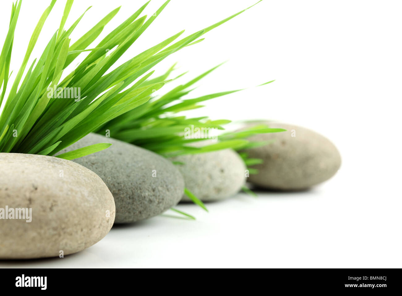 Zen stone with fresh grass on white background - Stock Image
