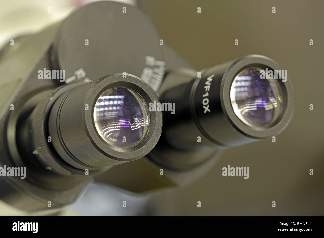 binocular microscope close up of eye piece - Stock Image