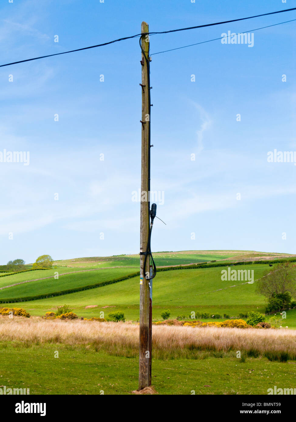 Telephone pole and wires in a field in England UK Stock Photo ...