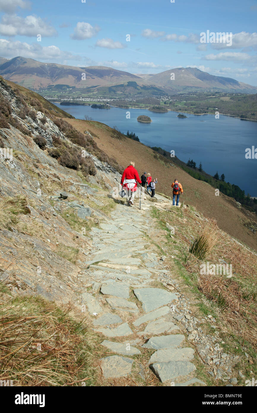 A path on Catbells leading down to Derwentwater in The English Lake District National Park Cumbria England UK - Stock Image