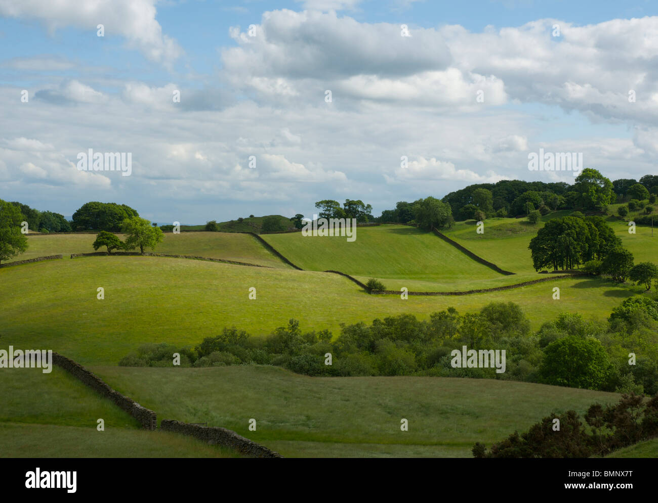 Fields near Crook, Lake District National Park, Cumbria, England UK - Stock Image
