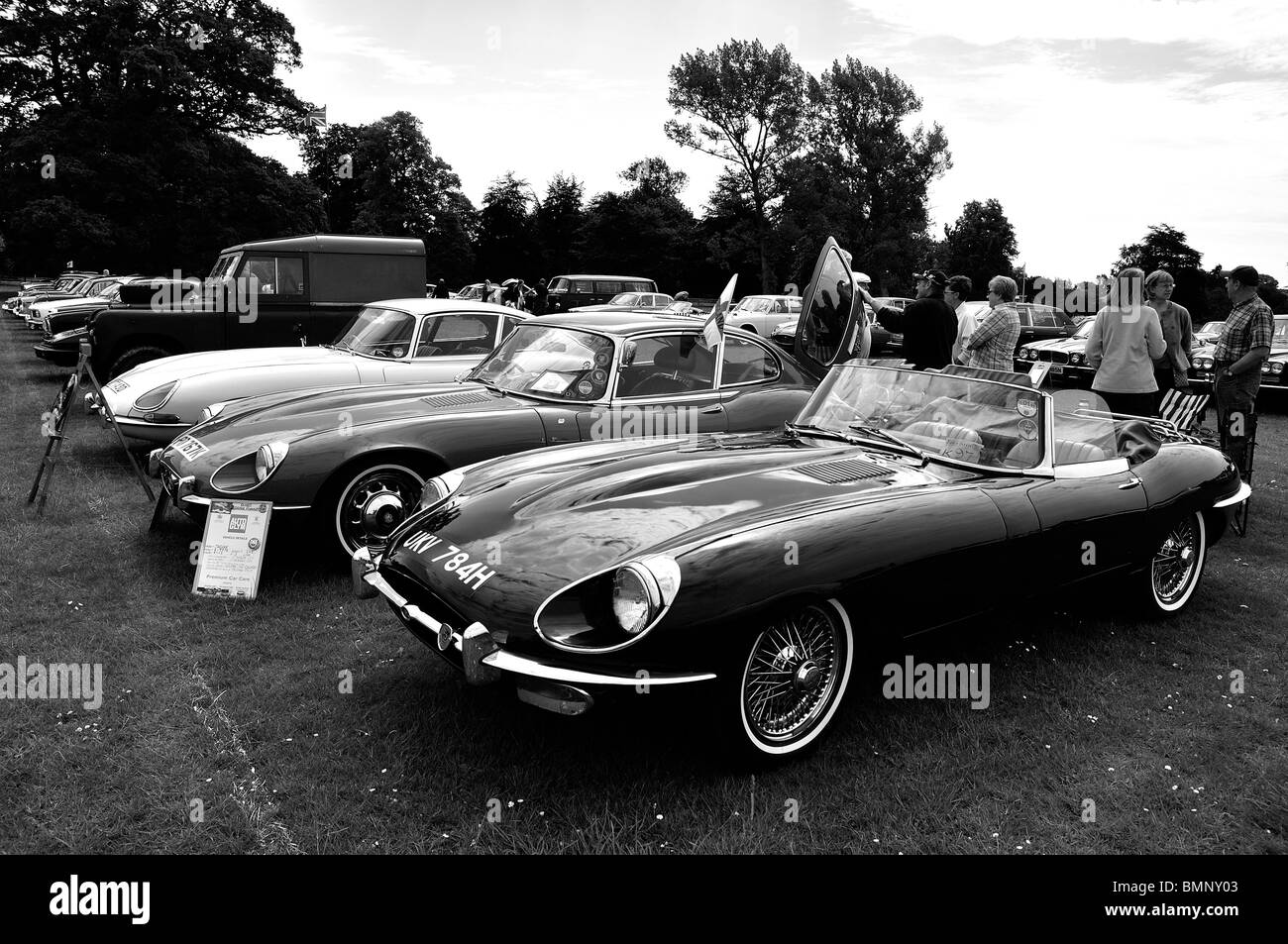 Jaguar E-type cars at Classic Car Show in Luton 2010 - Stock Image