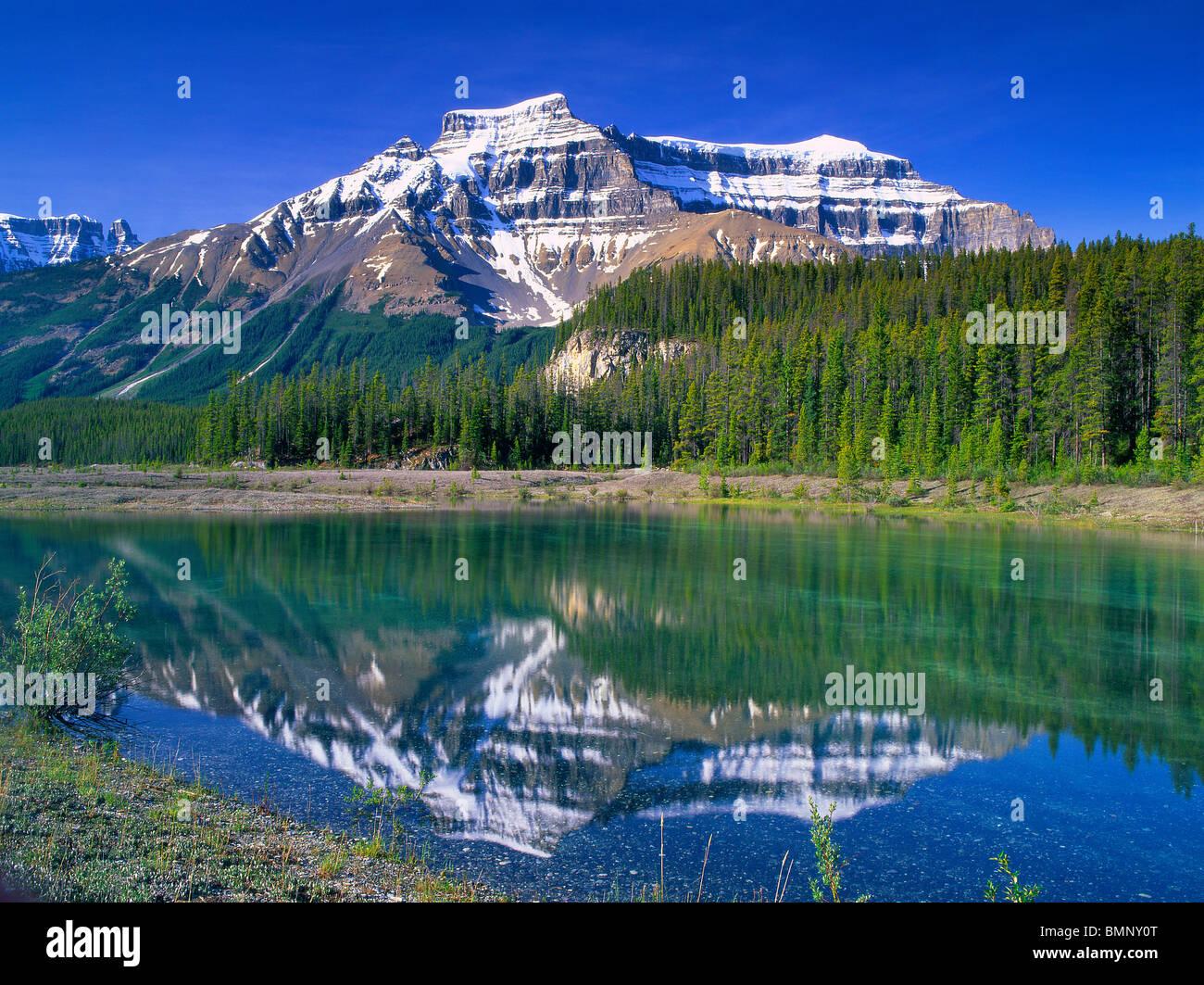 Jasper National Park Canada Alberta - Stock Image