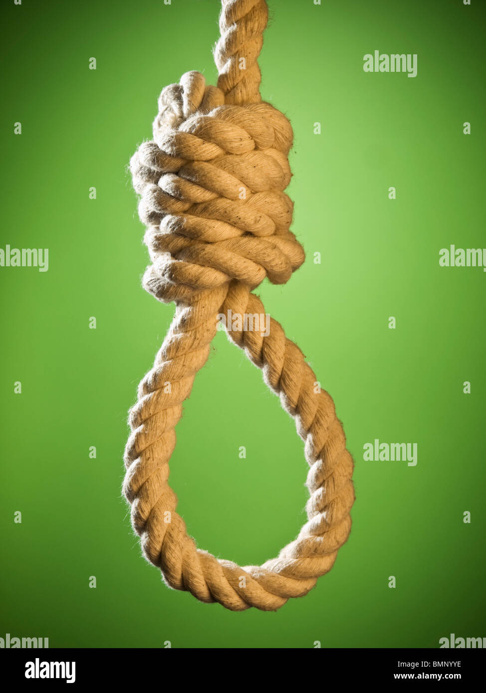 A hangman's noose over a green background. - Stock Image