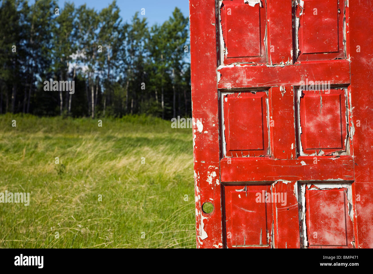 Alberta, Canada; An Old, Worn Red Door In A Field - Stock Image