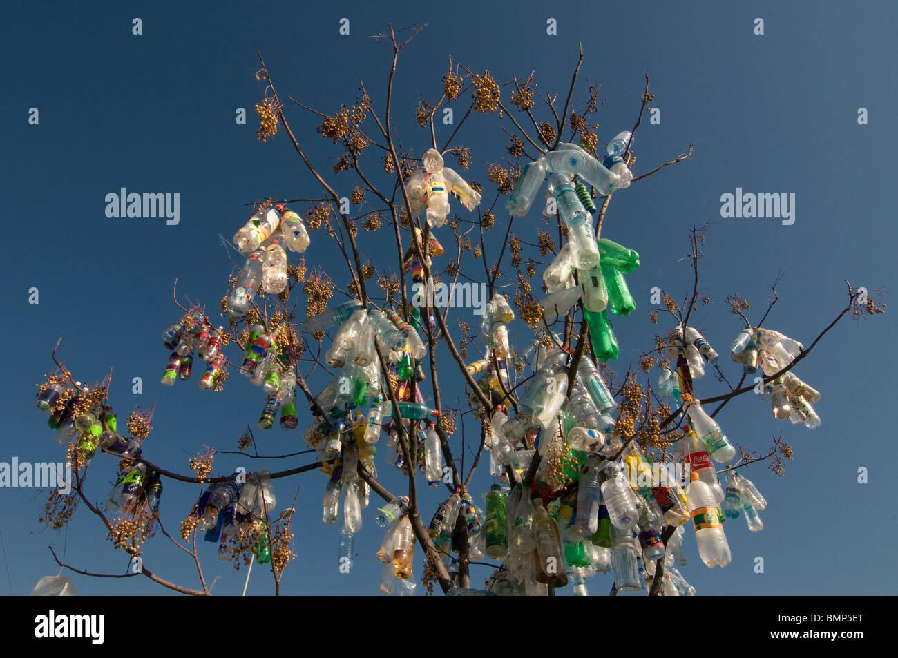 Empty plastic bottles over tree Stock Photo