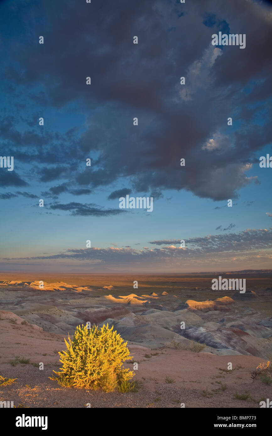 Sunrise at Little Painted Desert County Park, Navajo County, north of Winslow, Arizona, USA - Stock Image